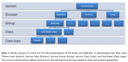 CICES_Structure